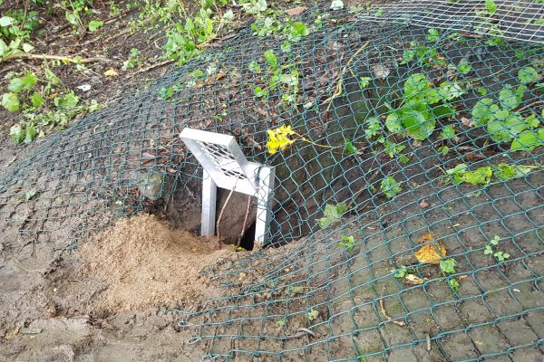 A Badger Sett Exclusion